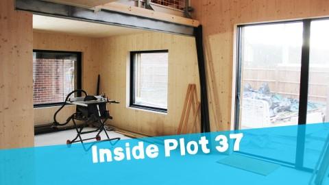 Inside Plot 37…